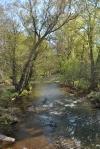 Back Roads Creek2