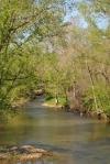 Back Roads Creek3