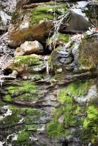 Mossy Rocks I