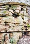Mossy Rocks II