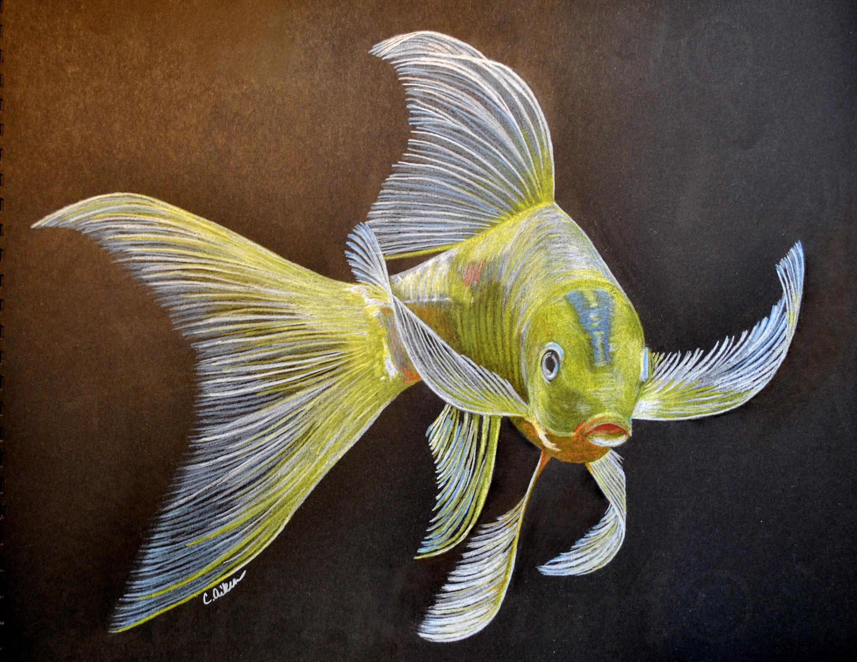 Yellow Koi I | Cari Aiken Art