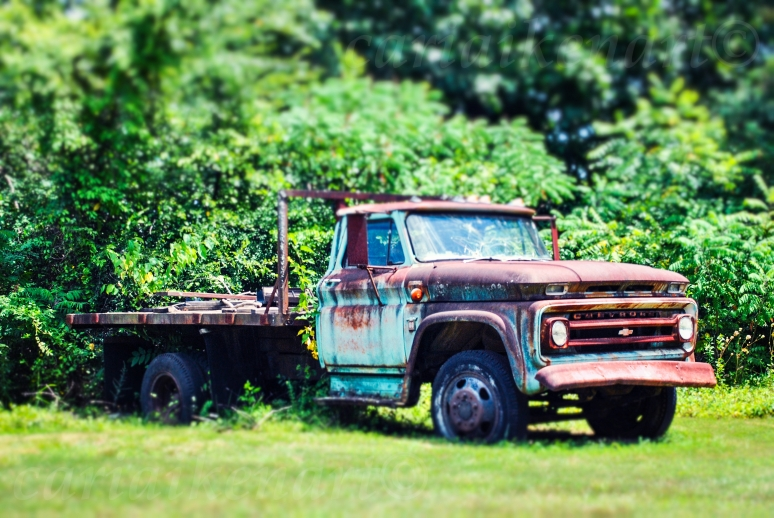 Old Rusty Chevy