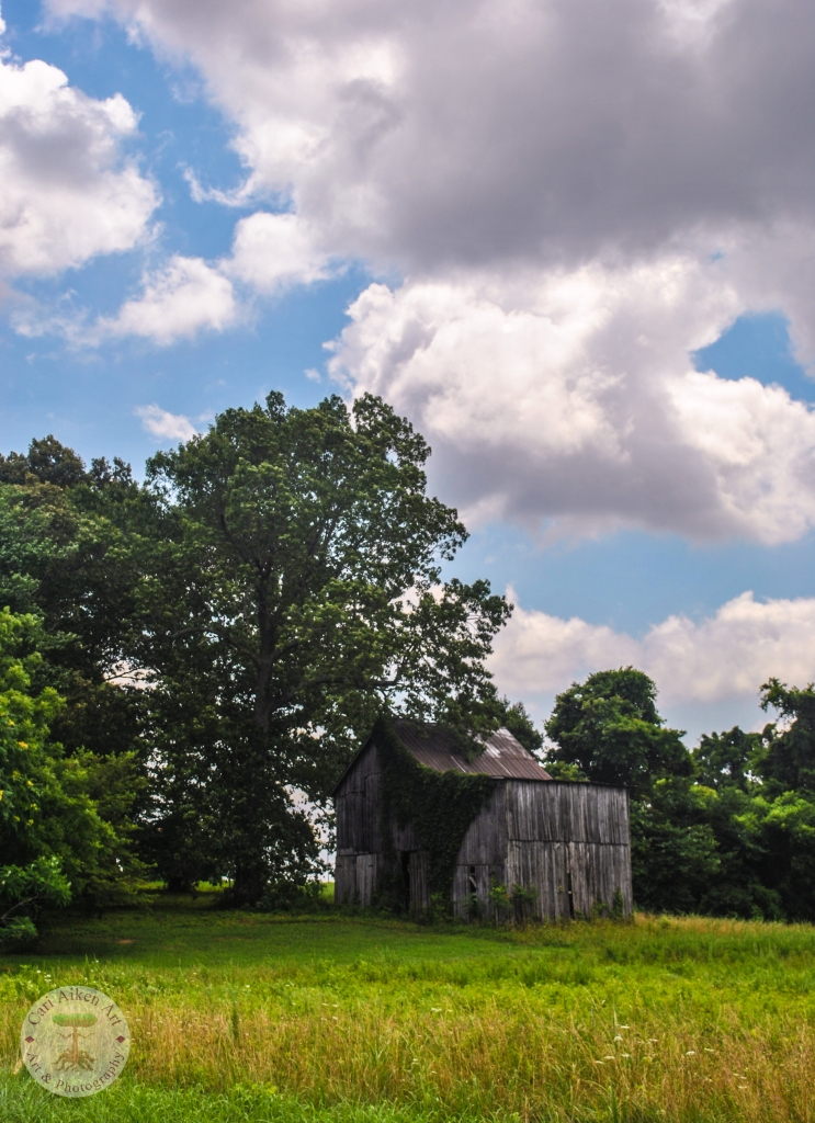 Another Old Kentucky Barn