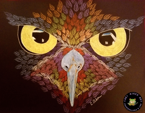 Owl Eyes WM